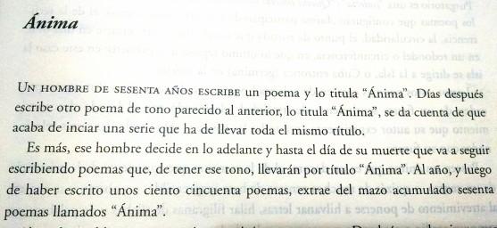 Anima 2